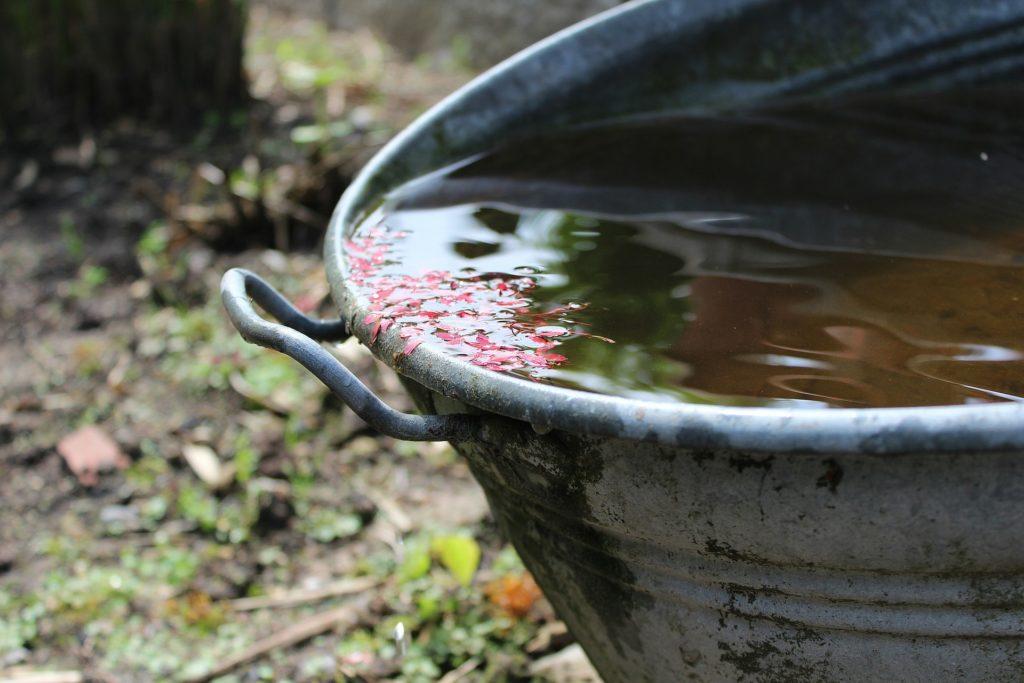 Water in bucket